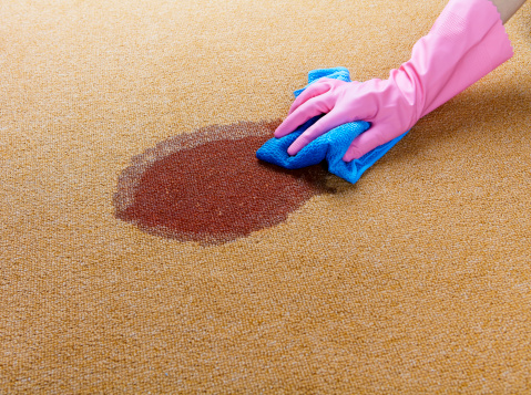 How to Get Acrylic Paint Out of Carpet?
